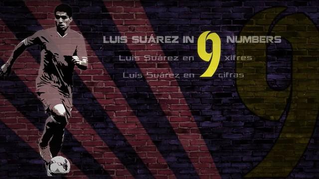 9 xifres